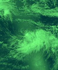 TropicalStorm_GreenGrayBlend