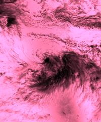 TropicalStorm_LightPinkBlend