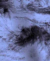 TropicalStorm_OffWhiteBlend