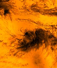 TropicalStorm_OrangeBlend