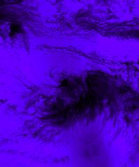 TropicalStorm_VoiletBlend