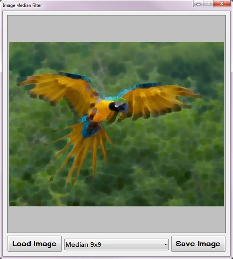 Image Median Filter Sample Application