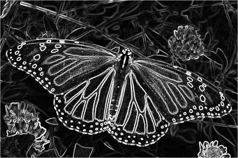 C# How to: Image Edge Detection | Software by Default