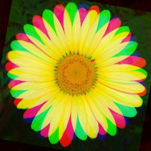 Daisy Rotate Red 0 Green 10 Blue 20