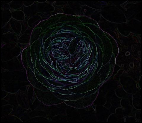 Rose Isotropic 3 x 3 x 8