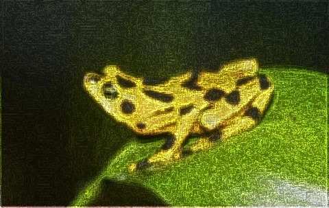 Frog: Filter Size 9x9