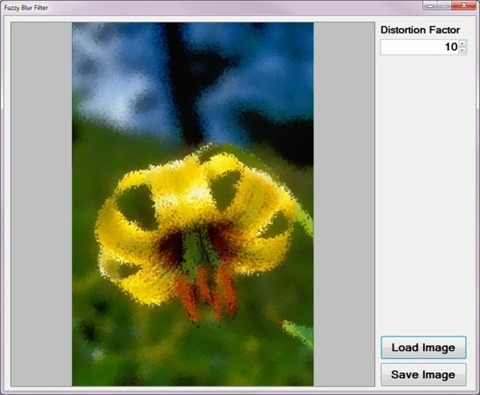 ImageDistortionBlur_SampleApplication