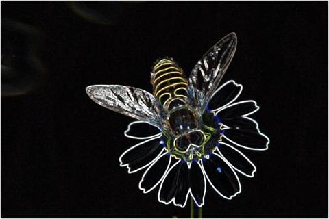 Bee Filter 3x3 Factor 5