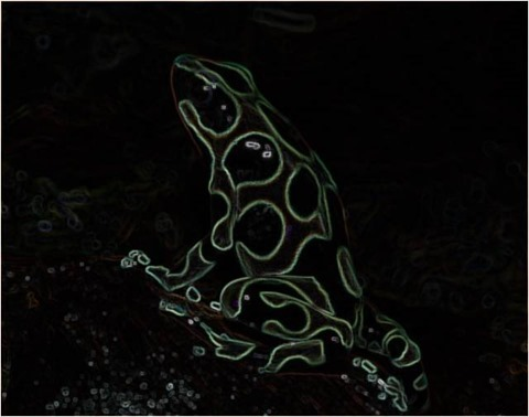 Frog2_Filter3x3_Smoothed